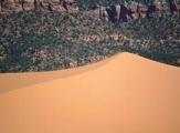 Dunes de sable de Coral Pink Sand Dunes, Utah