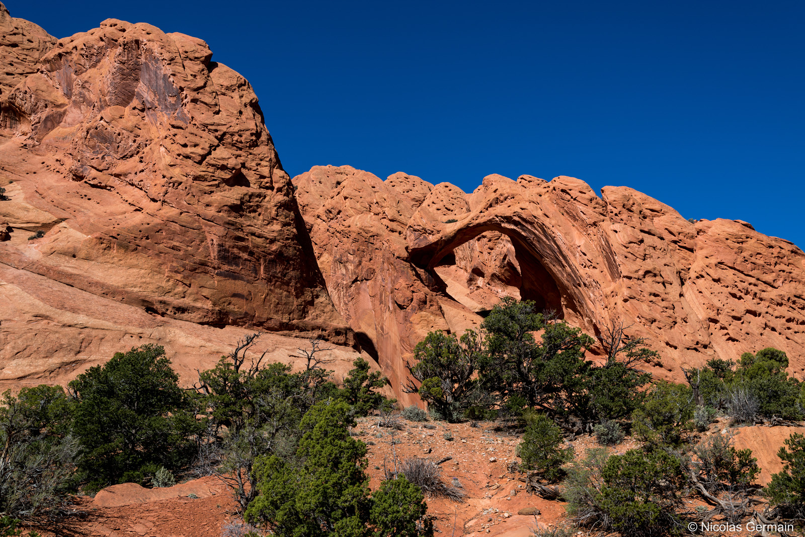 Saddle Arch dans Upper Muley Twist Canyon, Capitol Reef