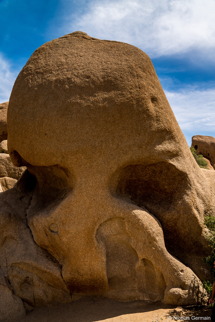 Skull rock, rocher en forme de crâne dans Joshua Tree National Park
