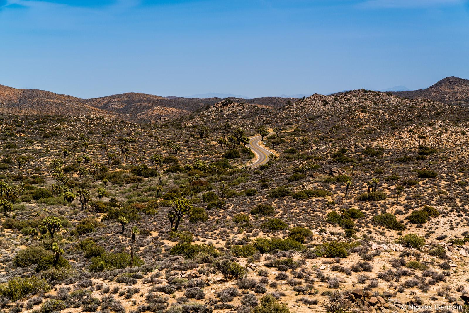 La route traverse le désert de pierres et les forêts d'arbres de Josué dans Joshua Tree National Park