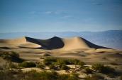 Dunes de sable de Mesquite dans Death Valley