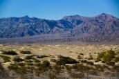 Etendue de dunes de sable de Mesquite dans la vallée de la mort