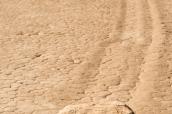 Une pierre et la marque qu'elle a laissée lors de son avancée dans The Racetrack, Death Valley