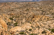 Roches à perte de vue près de Mastodon Peak, Joshua Tree