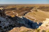 Vue sur la steppe de Petrified Forest du haut des badlands de Blue Mesa
