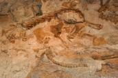 Ossements de dinosaures dans la carrière de Dinosaur National Monument, section Utah