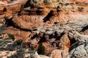 Différentes formes et couleurs de roche dans White Pocket, Arizona