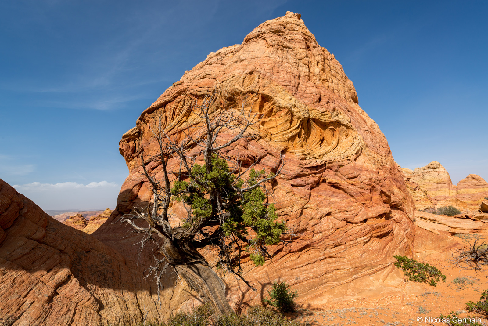 La roche semble avoir été malaxée, Coyote Buttes South