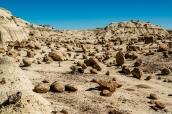 Un jardin de centaines de pierres arrondies forment comme un tapis dans Bisti Badlands, Nouveau-Mexique