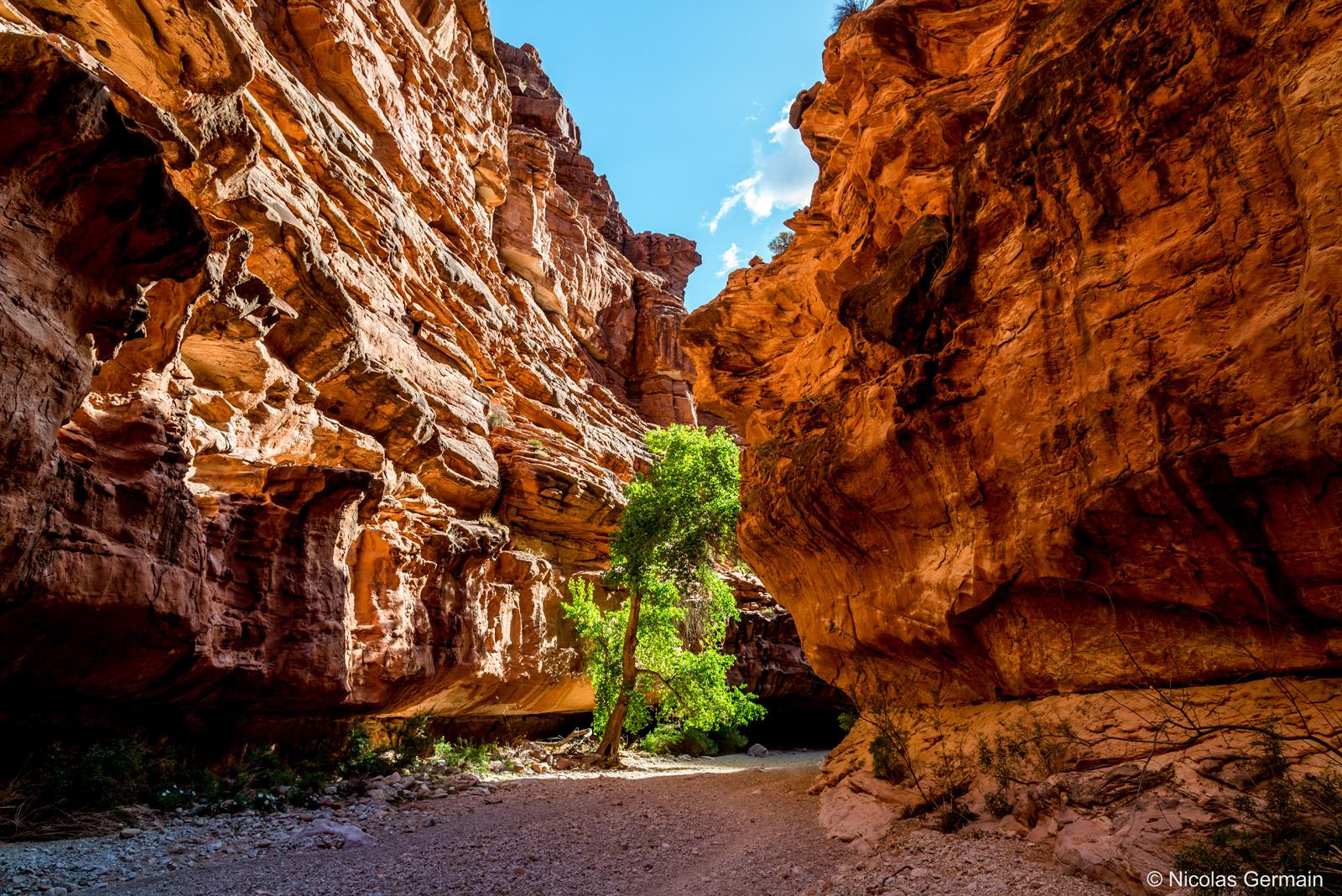 Le chemin en direction de Supai passe entre les parois du Canyon Havasu