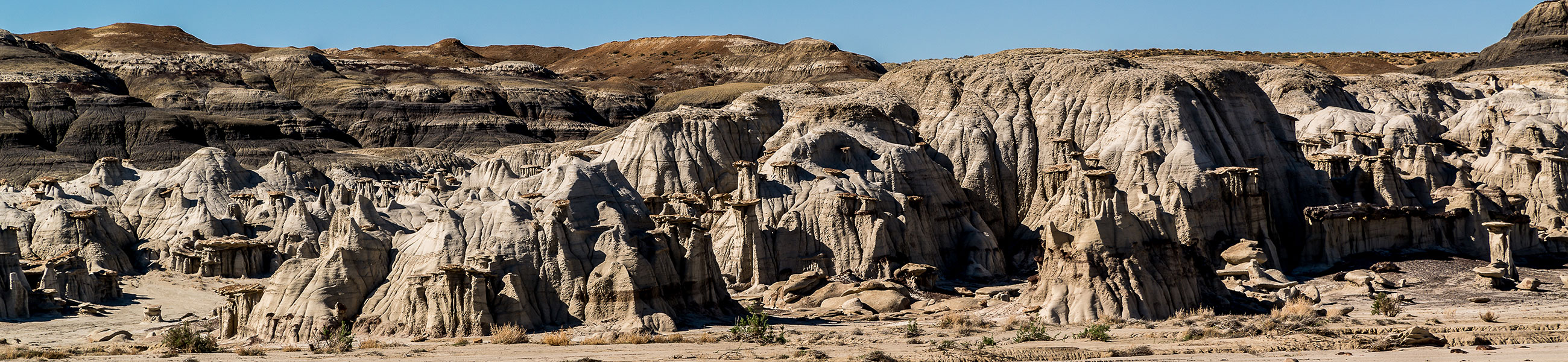 Badlands et hoodoos de Bisti Wilderness