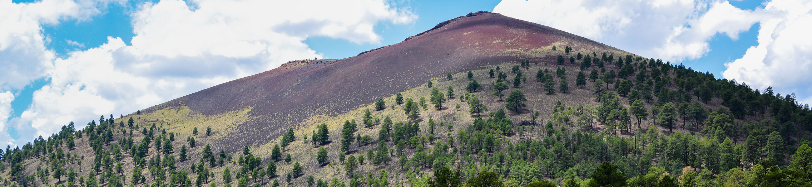 Paysage de Sunset Crater Volcano National Monument
