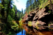 West Fork of Oak Creek au nord de Sedona