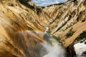 Canyon jaune et la Yellowstone River dans Yellowstone National Park, Wyoming