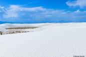 Vue sur les dunes de White Sands, Nouveau-Mexique