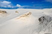 Sable durçi dans les dunes blanches de White Sands