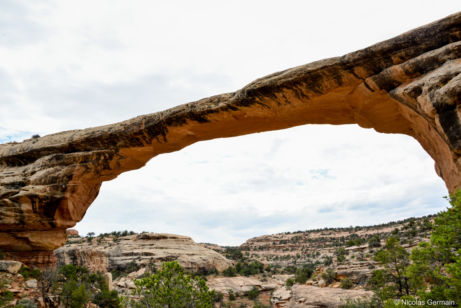 natural-bridges-owachomo-trail