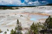 Vue de Norris Geyser Basin dans Yellowstone Basin, Wyoming