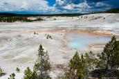 Vue de Norris Geyser Basin dans Yellowstone Basin, Wyoming