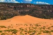 Dunes de sable orange de Coral Pink Sand Dunes, Utah