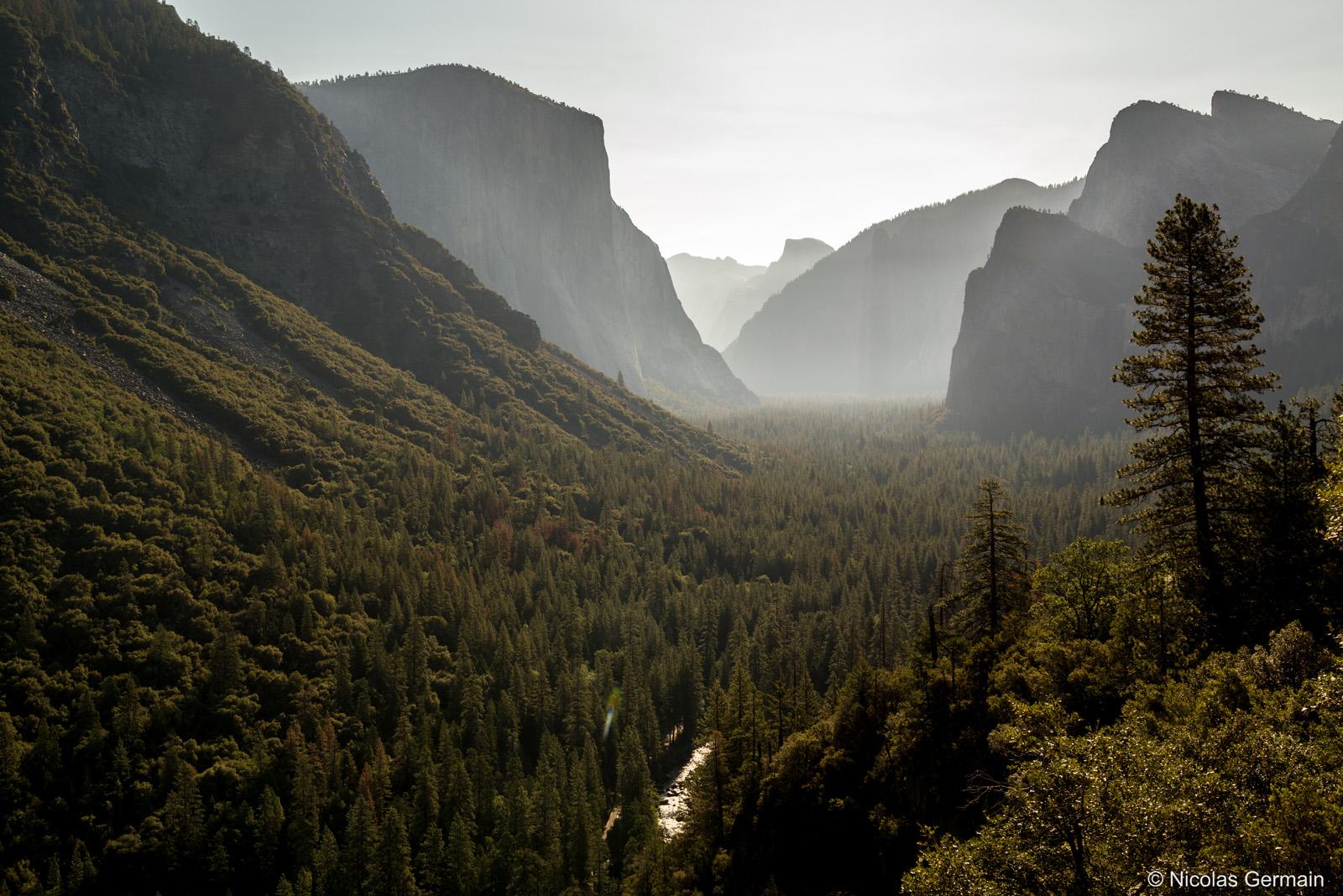El Capitan et le Half Dome dans le fond dominent la vallée de Yosemite National Park au petit matin, Californie