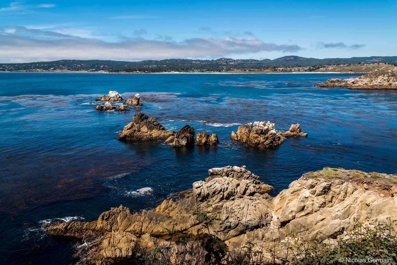 Paysage de la côte pacifique à Point Lobos, Californie