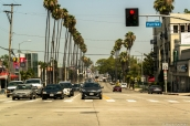 Palmiers sur Sunset Boulevard, Los Angeles