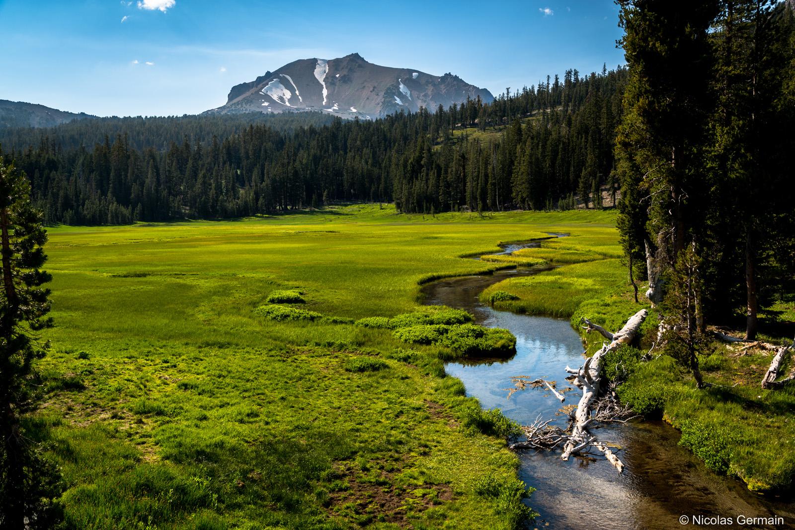 Plaine herbeuse verdoyante près de Kings Creek, Lassen Volcanic National Park