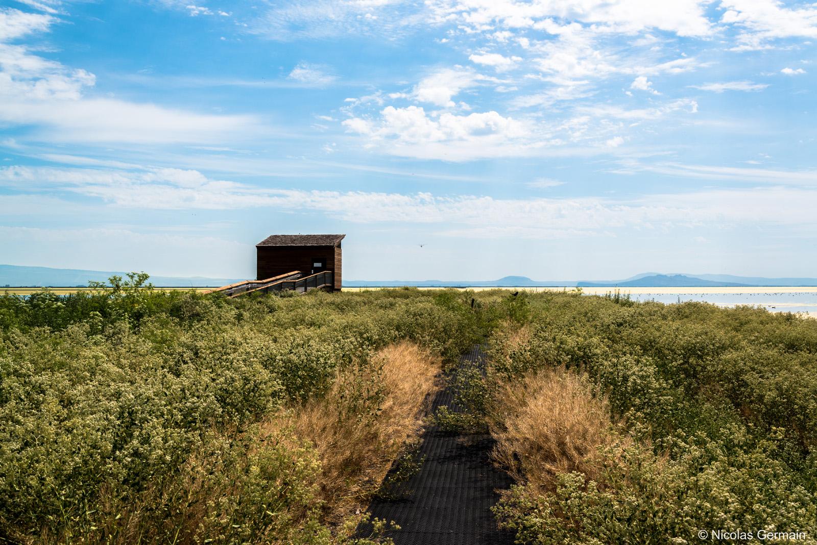 Cache à oiseaux au bord de Tule Lake, Californie