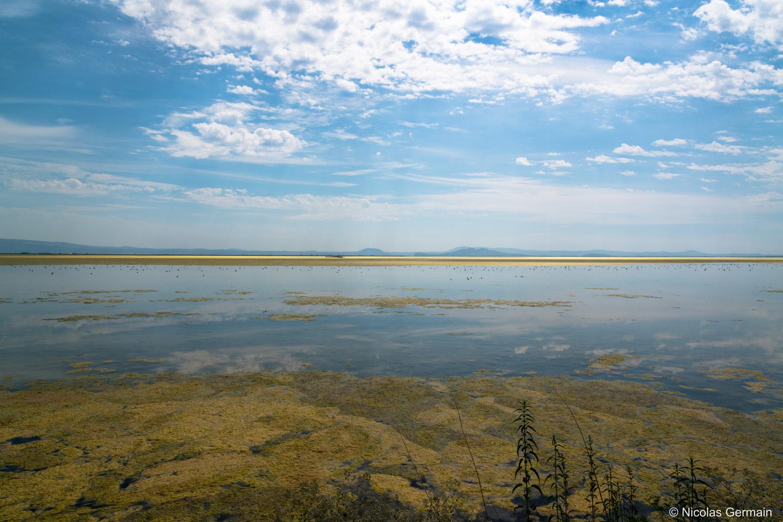 Tule Lake dans le nord de la Californie