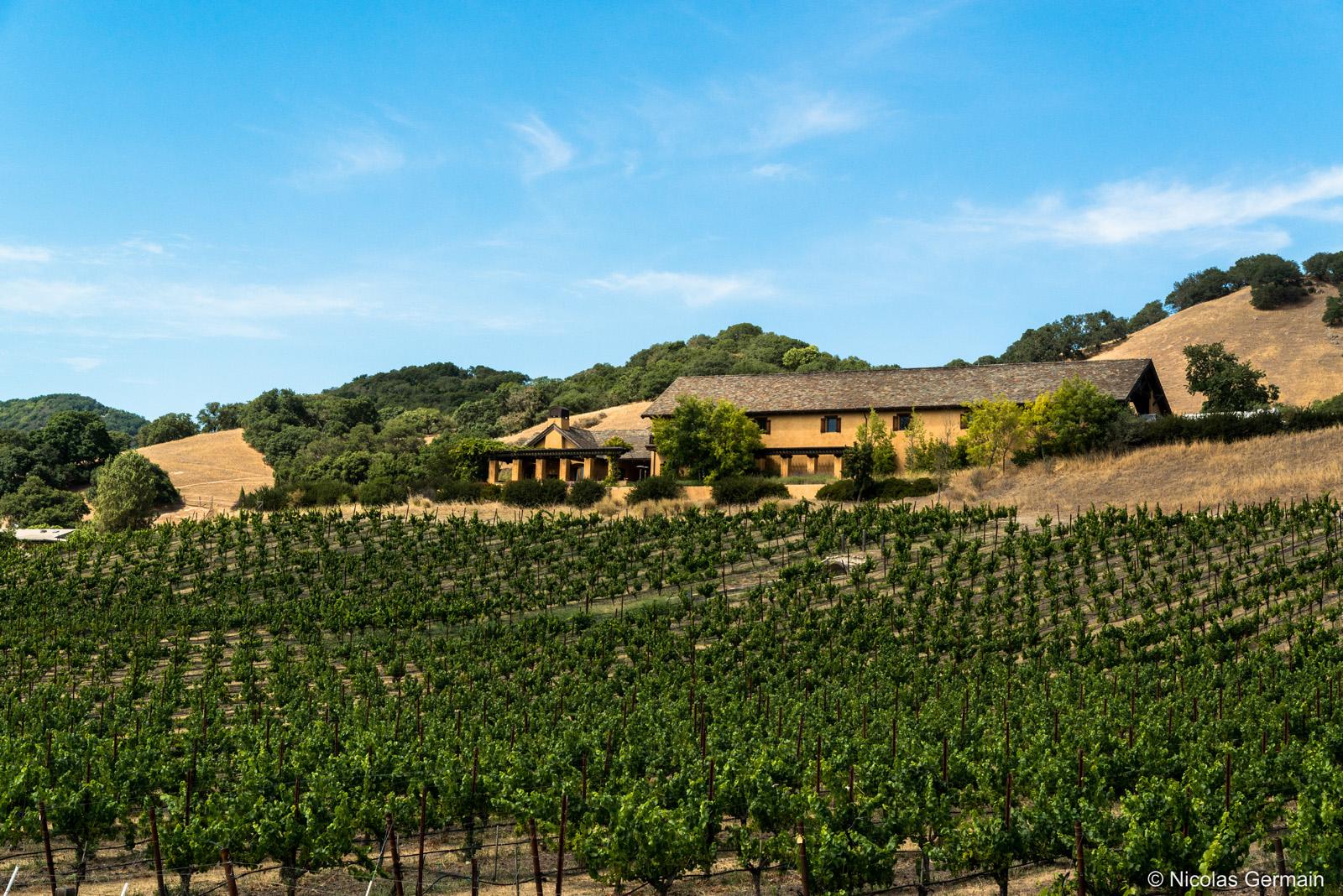 Domaine de la Sonoma Valley et ses vignes, Californie