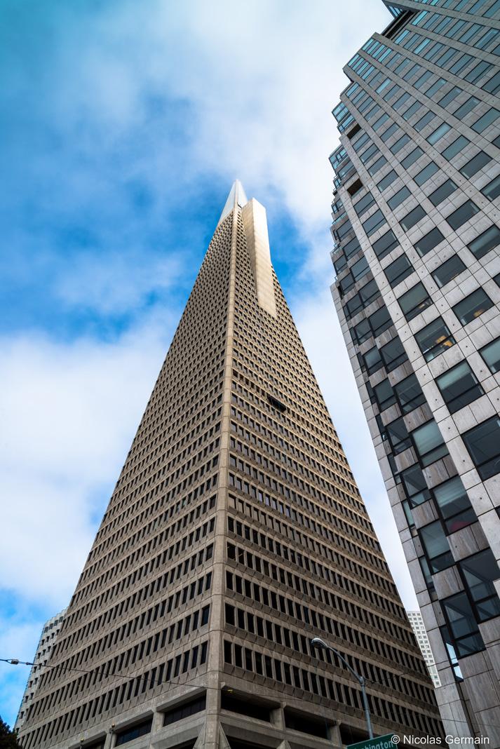 Vue en contre-plongée de la Transamerica Pyramid, dans le quartier des finances de San Francisco