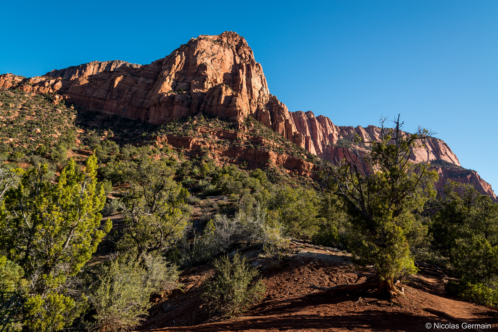 Paysage de Kolob Canyons sur La Verkin Creek Trail, Zion National Park