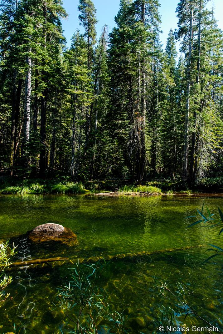 Les eaux très vertes de la Merced River près de Nevada Falls, Yosemite