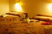 Une chambre avec deux lits doubles dans un chalet de Canyon Lodge & Cabins à Yellowstone