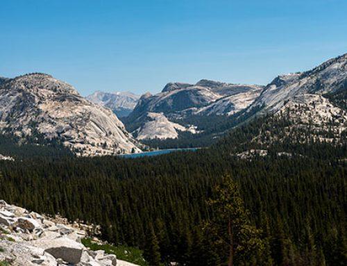Yosemite : la Tioga Road enfin ouverte !
