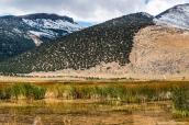 Ruby Lake abrite de nombreuses espèces d'oiseaux dans ses marécages