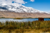 Des observatoires d'oiseaux permettent d'observer la faune de Ruby Lake, Nevada