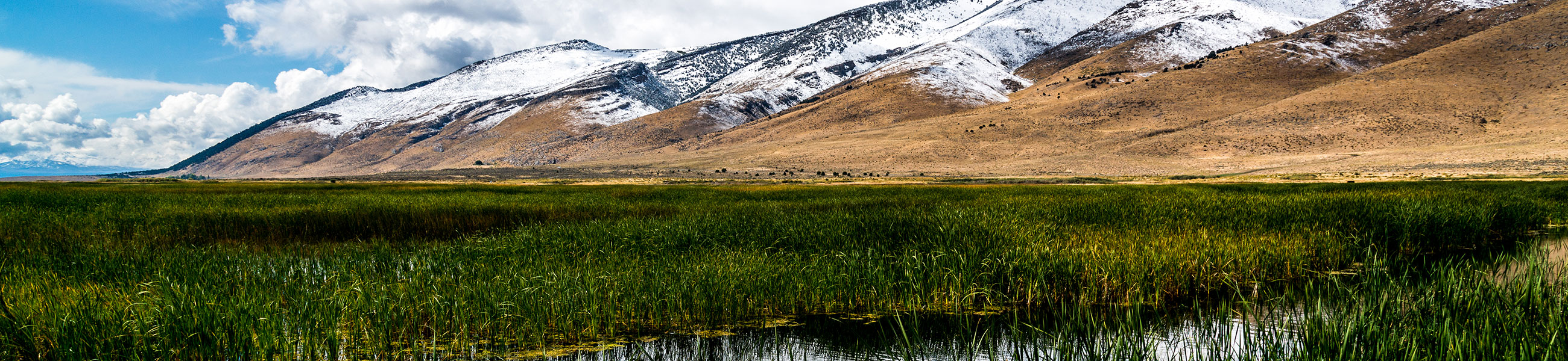 Ruby Lake National Wildlife Refuge fin septembre, Nevada