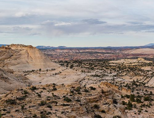 Trump réduit drastiquement la superficie de Grand Staircase-Escalante et Bears Ears