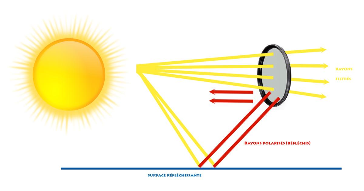 Schéma de fonctionnement d'un filtre polarisant photo