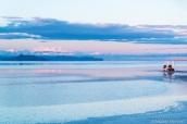 Shooting photo sur les étendues de Bonneville Salt Flats inondées en fin de coucher de soleil