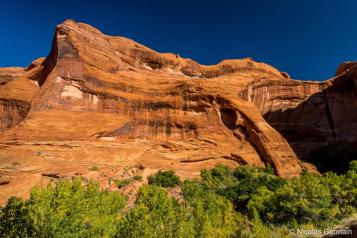 Cliff Arch, l'une des arches sur le chemin de Coyote Gulch
