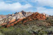 Le contraste de couleurs entre les roches rouges et les roches blanches est l'une des caractéristiques de Snow Canyon State Park