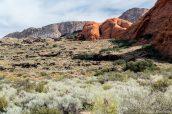Zone volcanique et dunes pétrifiées de Snow Canyon State Park