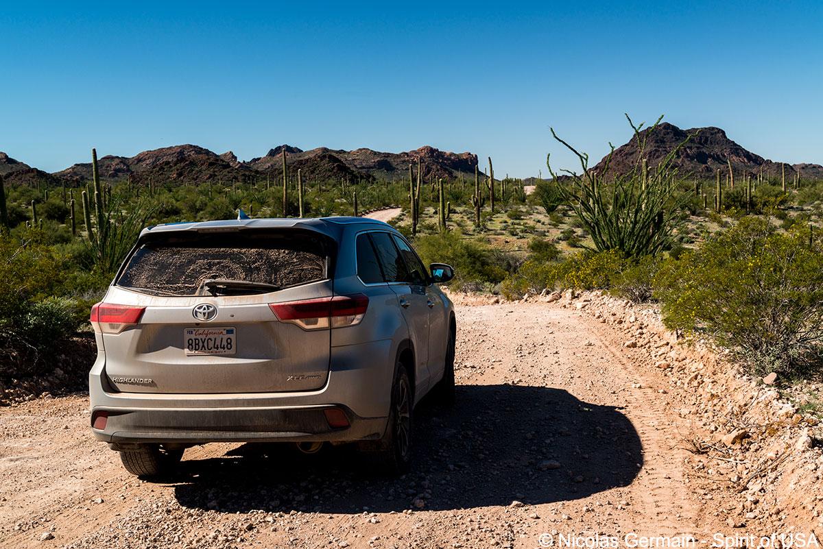 Toyota Highlander sur les pistes d'Organ Pipe Cactus, Arizona