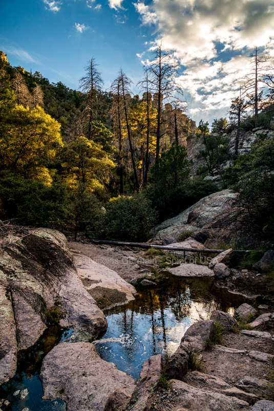 Ruisseau en bas d'Echo Canyon, Chiricahua