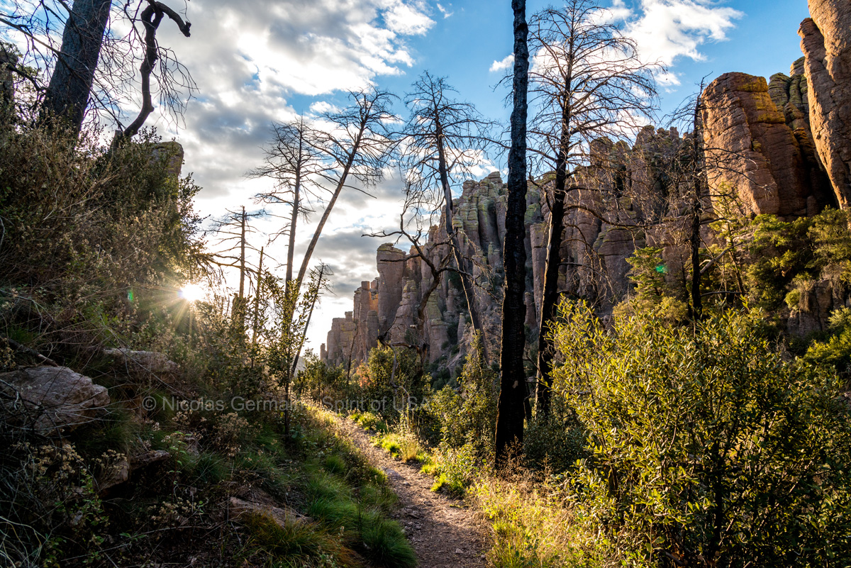 Sentier d'Echo Canyon Trail en fin d'après-midi, Chiricahua