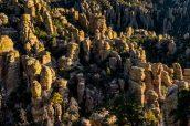 Paysage de Chiricahua vu du sentier Echo Canyon Trail au coucher du soleil
