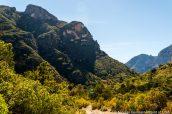 Montagnes et végétation luxuriante dans McKittrick Canyon, Guadalupe Mountains
